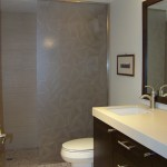 Bathroom Plumbing and Remodel